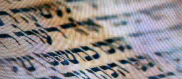 The Significance of Scripture